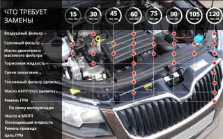 Шкода Октавия а7 регламент технического обслуживания (видео)